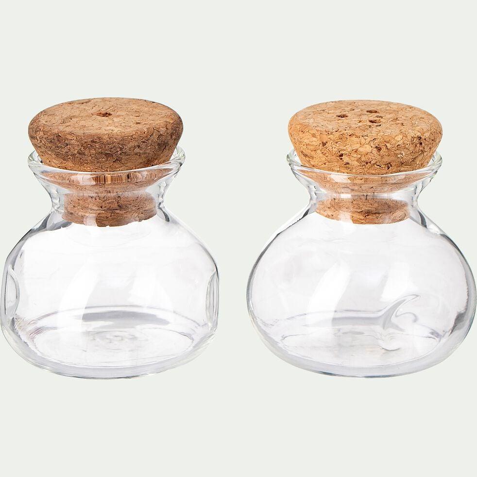 Set de 2 contenants en verre borosilicate 70ml - transparent-GOULA