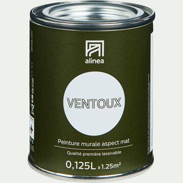 Peinture acrylique mate multi-supports - blanc ventoux 0,125L-PEINTURE
