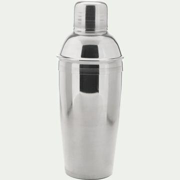 Shaker à boissons 50cl-Guesta