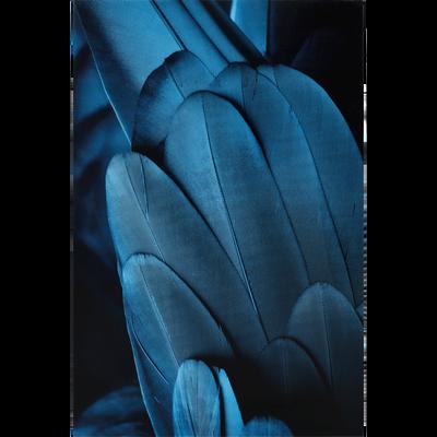 Image plexi bleue 120x80cm-ALULA