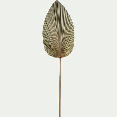 Feuille de palmier séchée décorative - naturel H100cm-PASSI
