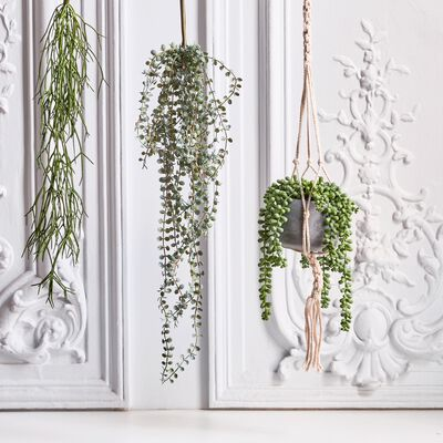 Plante retombante artificielle - vert H70cm-CEROPEGIA