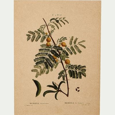 Toile imprimée motif mimosa l30xH40cm - marron-ROUMIE