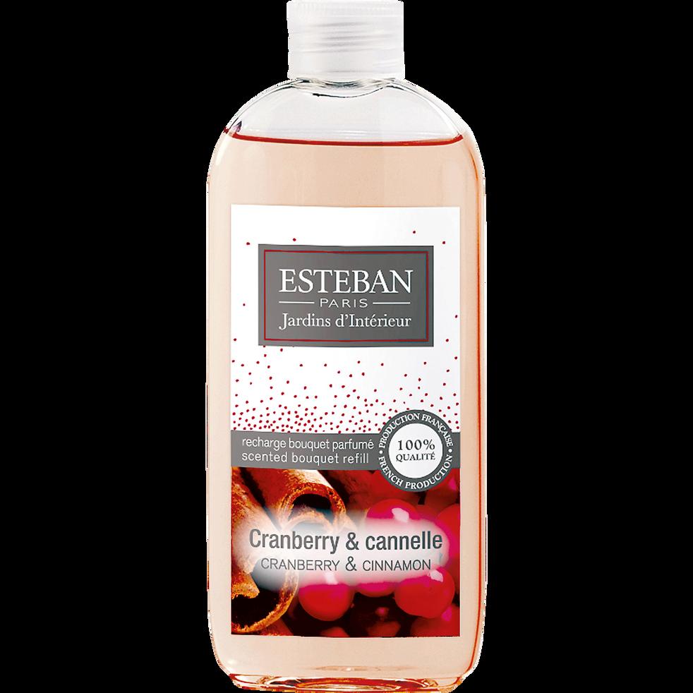 Recharge pour diffuseur cranberry cannelle 100ml-ESTEBAN