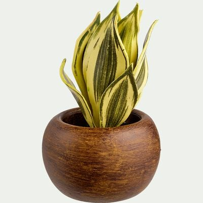 Succulente artificielle en pot - vert H14cm-SUCCULENTE