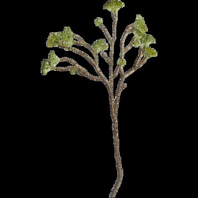 Tige longue verte H72cm-BOURGEONS