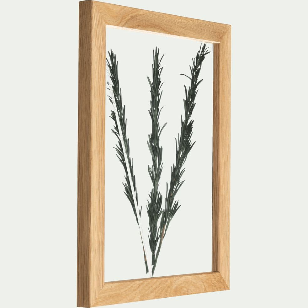 Plante encadrée romarin 28x34 cm-NATURE