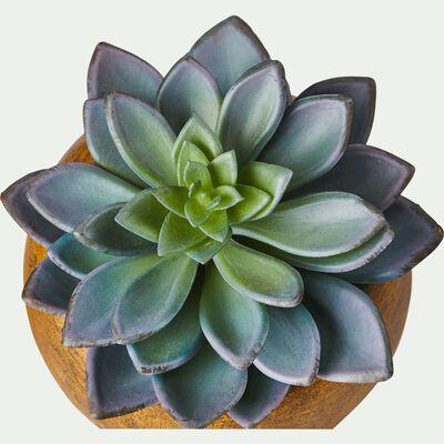 Plante artificielle verte H15cm-SUCCULENTE