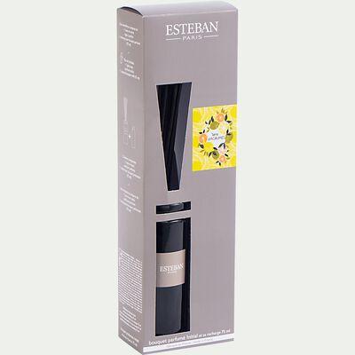 Bouquet parfumé terre d'agrumes avec recharge - 75ml noir-ESTEBAN