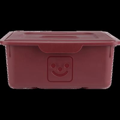 Tiroir de rangement 10L rouge sumac-ZACCHARIE