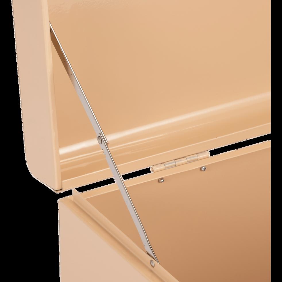 Malle de rangement en métal rose argile-ALIX