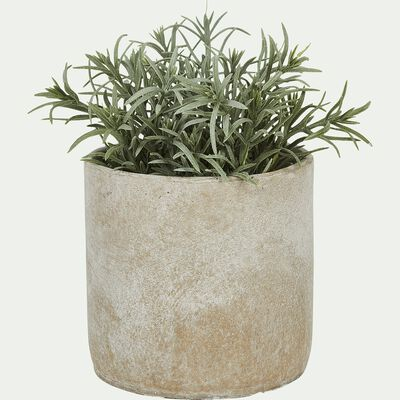 Plante artificielle romarin H16,5cm-Fern