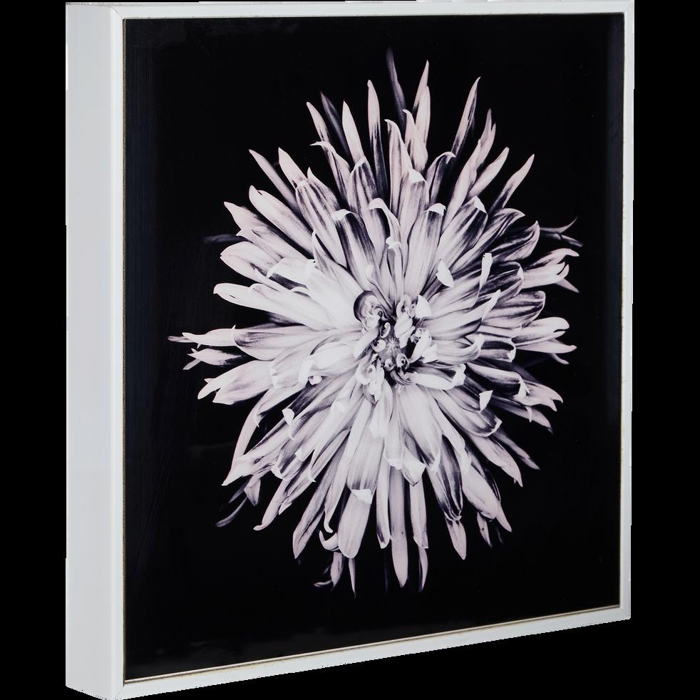 toile imprimée fleur 20x20cm-ANEMONE