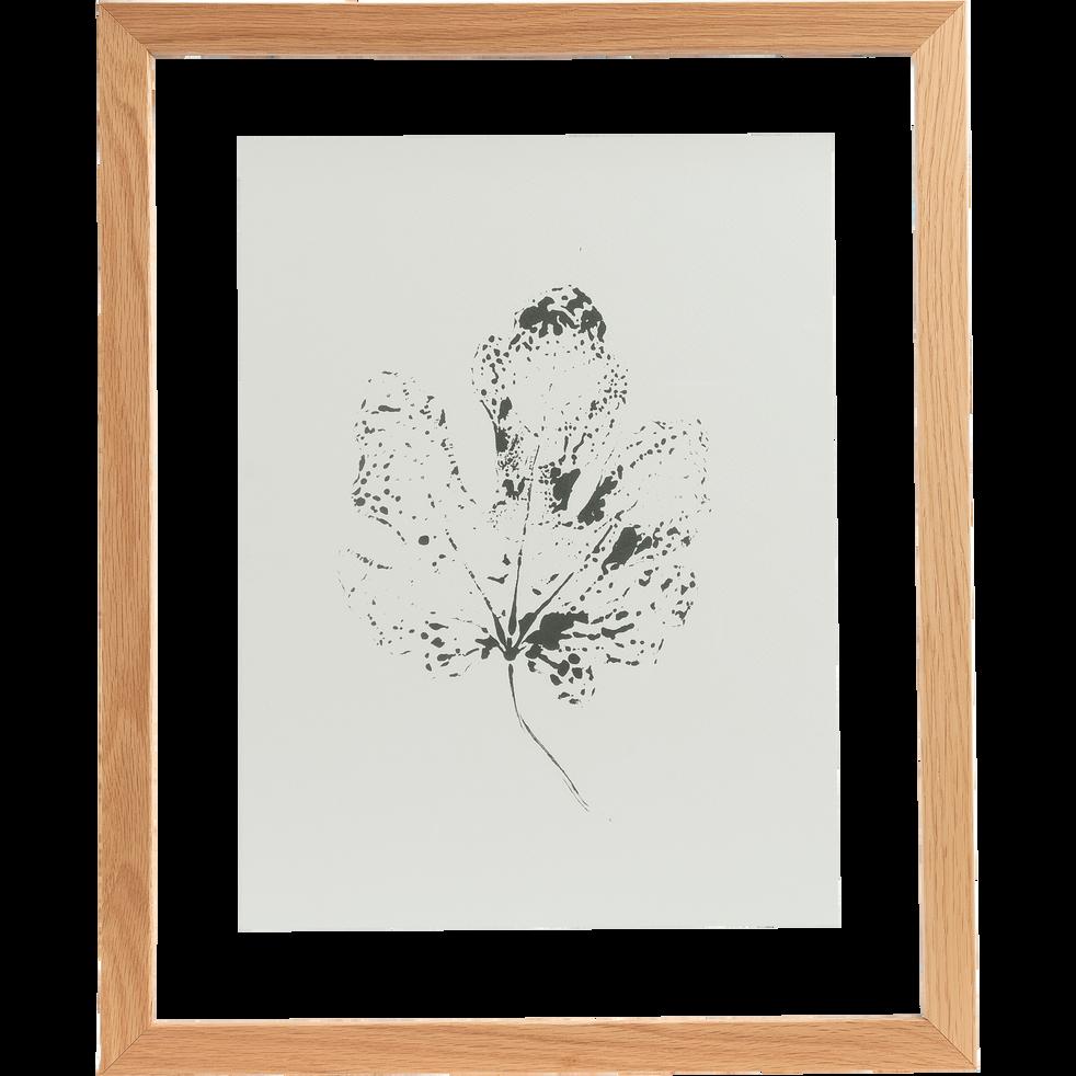 Image encadrée feuille de figuier 44x54cm-NATAQUA