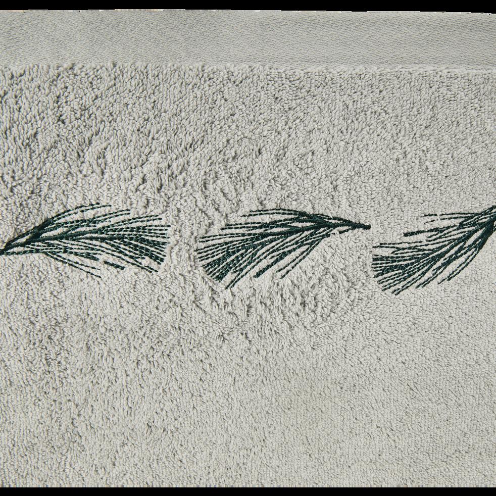 Serviette invité 30x50cm gris borie-AMBIN