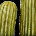 Cactus artificiel d'extérieur vert H72cm-GOBI