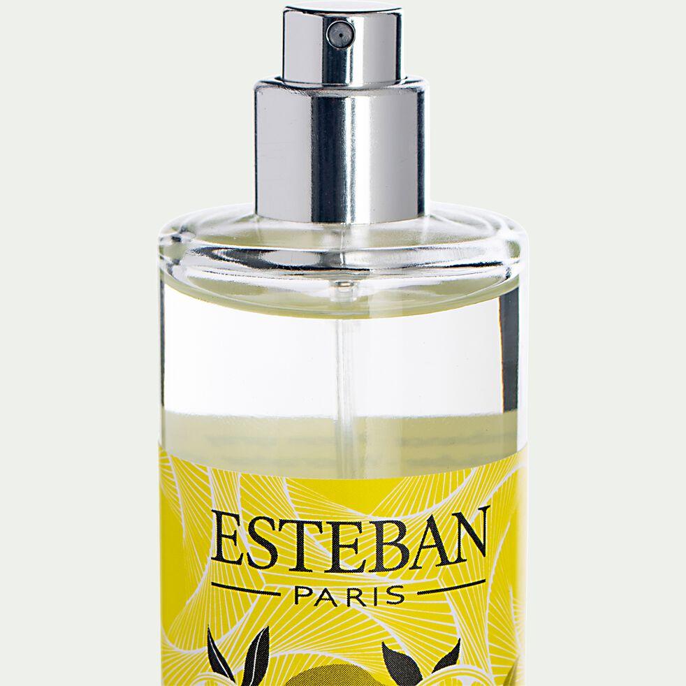 Vaporisateur de parfum d'intérieur terre d'agrumes - 75ml-ESTEBAN