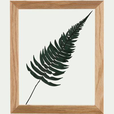 Plante encadrée fougère rock fern 28x34cm - déco murale-NATURE