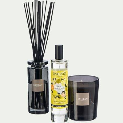 Bougie parfumée terre d'agrumes rechargeable - 170g noir-ESTEBAN