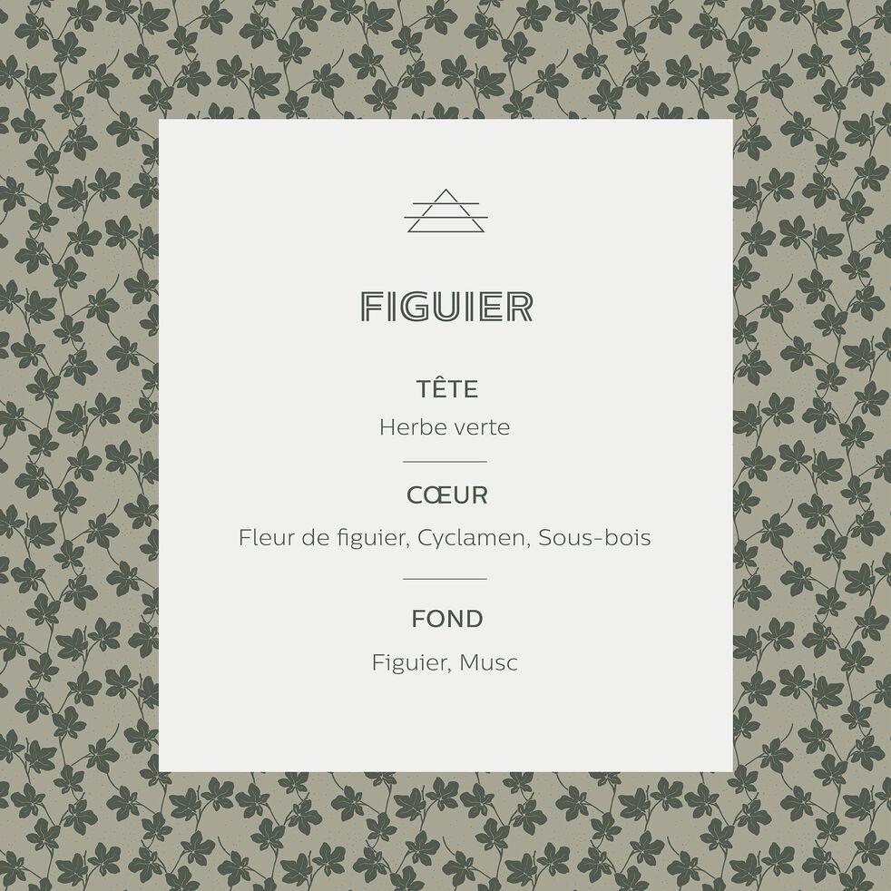 Bougie parfumée senteur Figuier 160g-FIGUIER