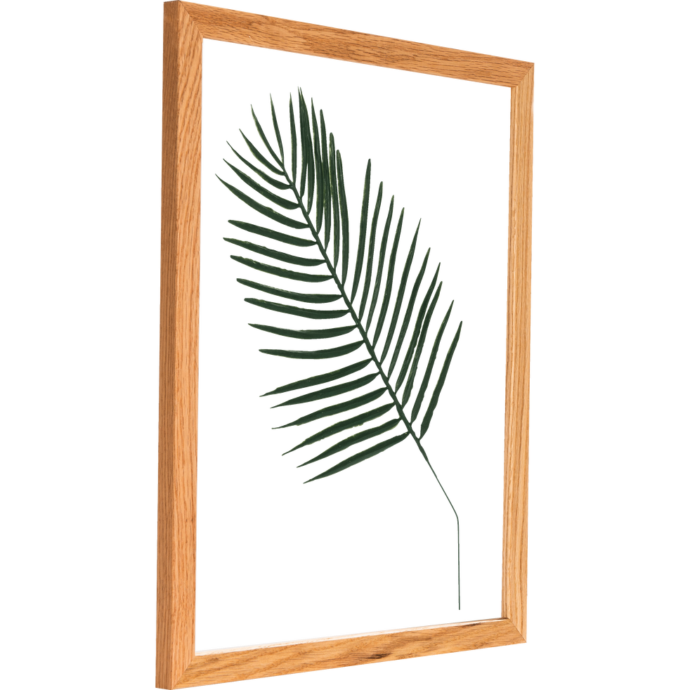 Plante encadrée feuille de palmier 44x54cm-NATURE