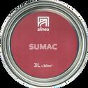 Peinture acrylique mate multi-supports 3L rouge sumac-PEINTURE