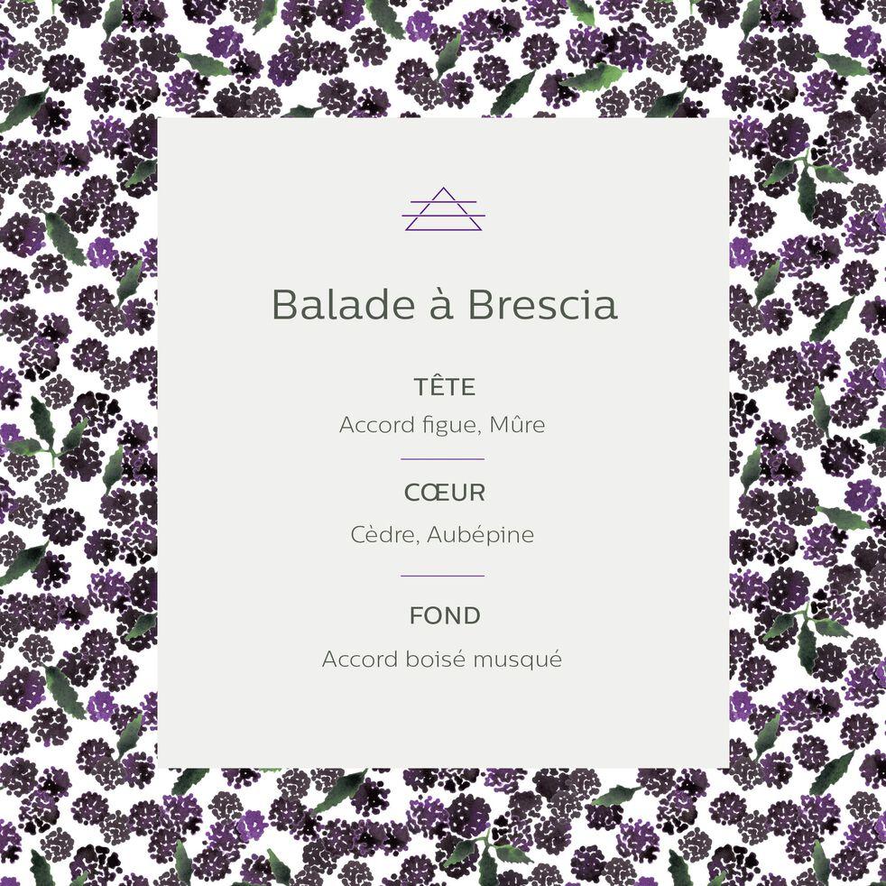 Recharge pour diffuseur senteur Balade à Brescia 500ml-BALADE