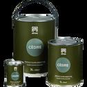 Peinture acrylique mate multi-supports 1L vert cèdre-PEINTURE