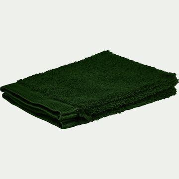 Lot de 2 gants de toilette bouclette en coton égyptien - vert cèdre-ARROS