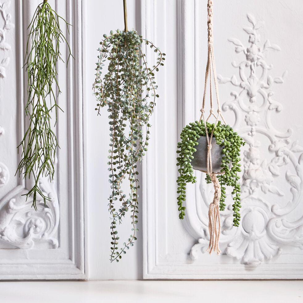 Plante artificielle tombante - vert H60cm-RHIPSALIS