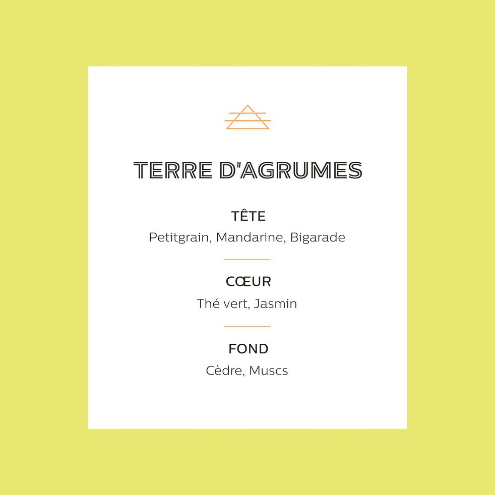 Recharge pour diffuseur senteur Terre d'Agrumes 250ml-TERRE D AGRUMES