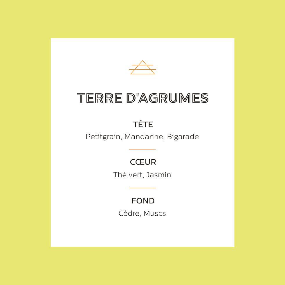 Recharge pour bougie parfumée senteur Terre d'Agrumes 170g-TERRE D AGRUMES