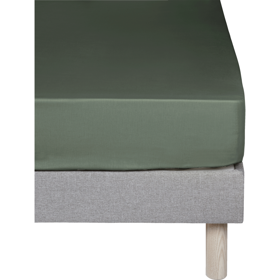 Drap housse en percale de coton Vert cèdre 160x200cm bonnet 25cm-FLORE