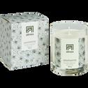 Bougie parfumée Agapanthe 160g-AGAPANTHE