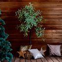 Eucalyptus artificiel avec LED H180cm-MILOUN