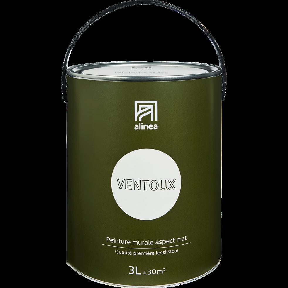 Peinture acrylique mate multi-supports 3L blanc ventoux-PEINTURE