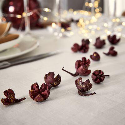 Déco végétale fruits secs - rouge-DOMS