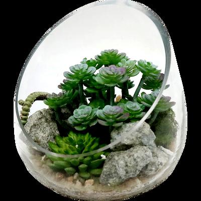 Terrarium plante artificiel D13cm-COUPE