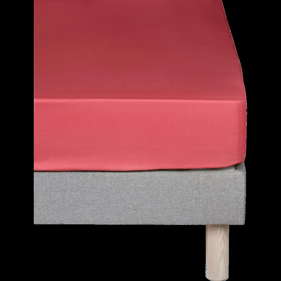 Drap housse en coton Rouge arbouse 140x200cm-bonnet 30cm-CALANQUES