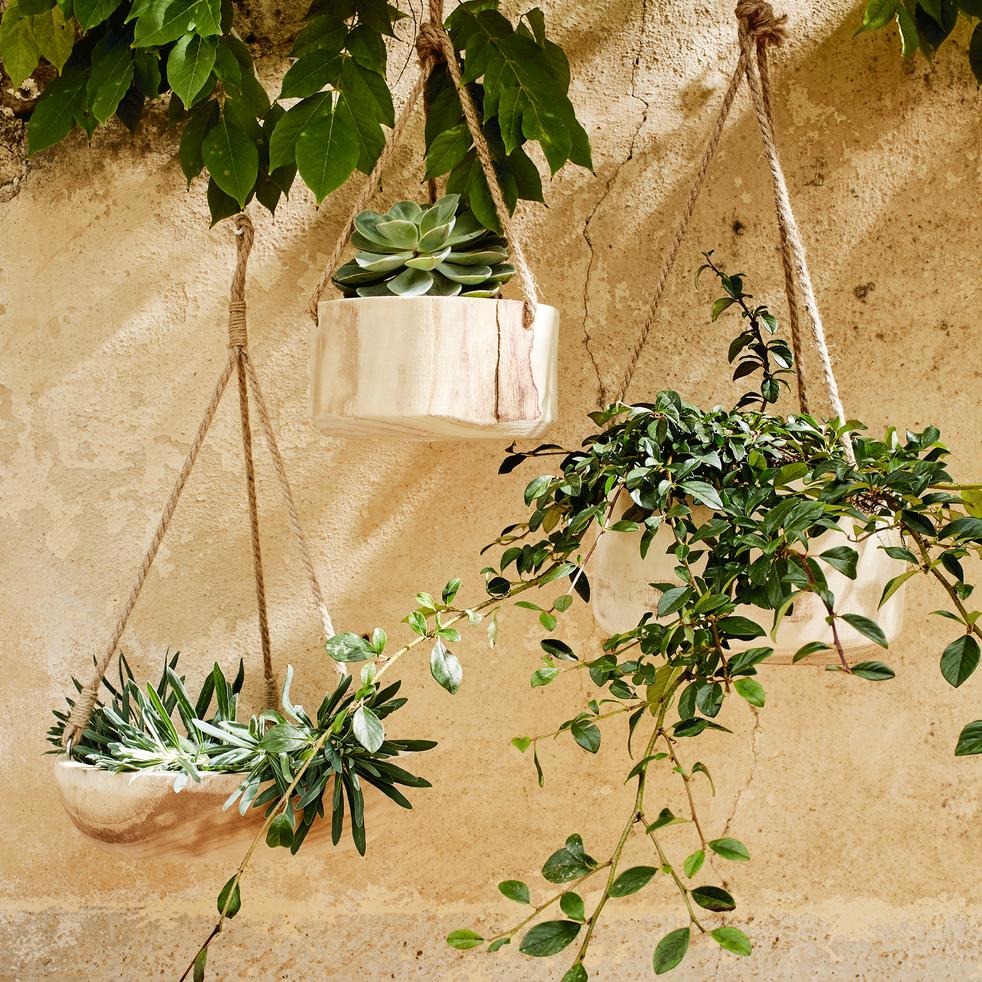 Pot à suspendre en bois de paulownia H12xD23cm-BOTA