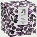 Bougie parfumée balade à brescia 400g-ESCAPADES