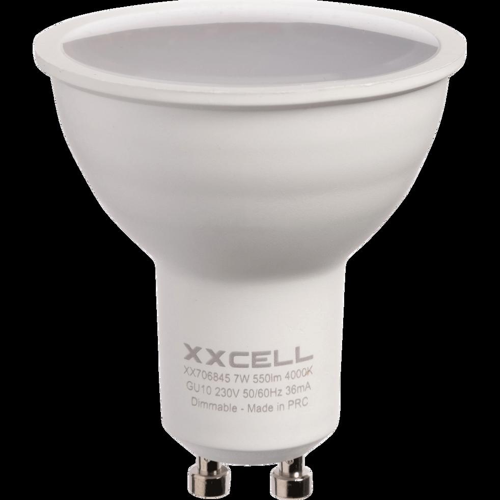 Ampoule LED blanc froid D5cm culot GU10-GU10
