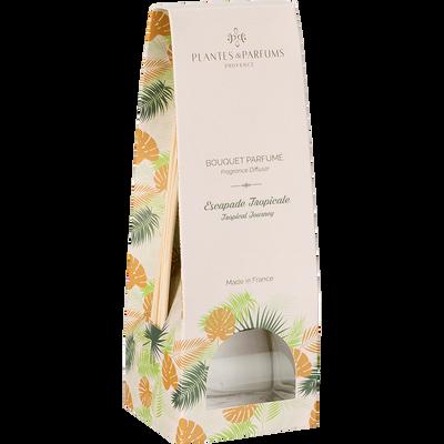 Diffuseur de parfum escapade tropicale 100ml-Tropical