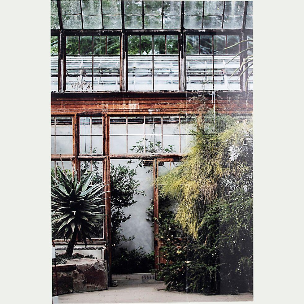 Image de plantes plexi l120xH80cm-VASOUN