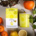 Bougie parfumée rechargeable senteur Terre d'Agrumes 170g-TERRE D AGRUMES