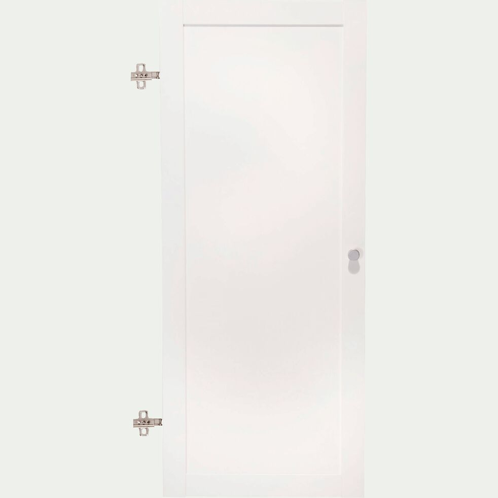 Porte pleine - blanc-Biala