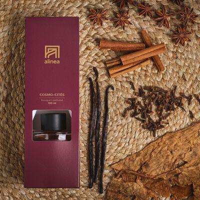 Diffuseur de parfum senteur Cosmo-cités 100ml-COSMO-CITES