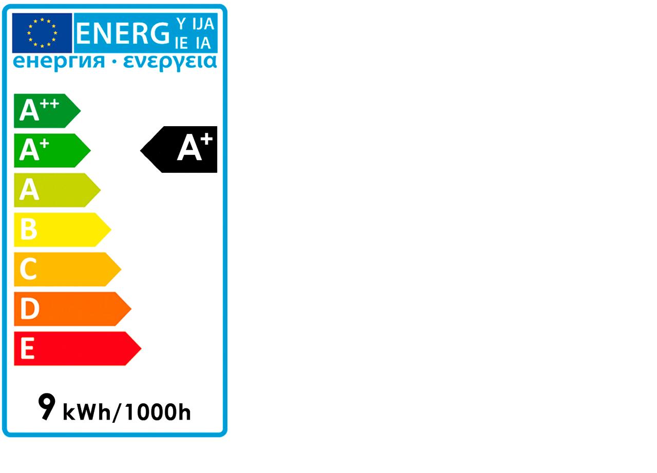 Lot de 2 ampoules LED D6cm culot E27 blanc froid-AMP STANDAR