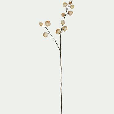 Fleur séchée artificielle amour en cage H94cm-Navotas