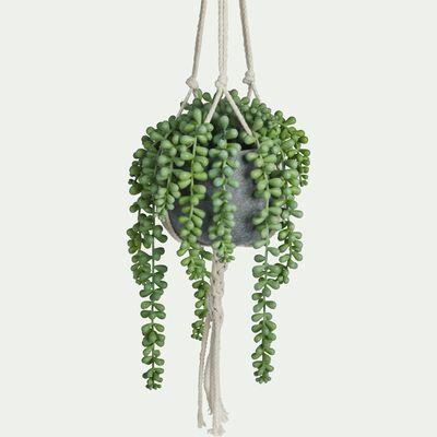 Plante tombante artificielle H70cm-SENECON